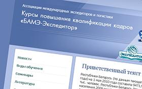 Стандарт БАМЭ-экспедитор