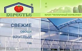 Создание сайта Брестского парниково-тепличного комбината