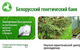 Создание сайта Научно-практического центра НАН Беларуси по земледелию
