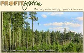 Разработка дизайна корпоративного сайта Профитсистем